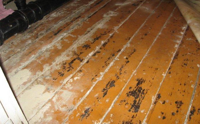 Ремонт деревянного пола в